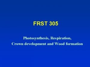 FRST 305 Photosynthesis Respiration Crown development and Wood