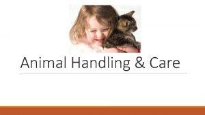Animal Handling Care General concepts in animal handling