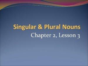 Singular Plural Nouns Chapter 2 Lesson 3 Objectives