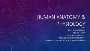 HUMAN ANATOMY PHYSIOLOGY BY DR STELLA SELENA M