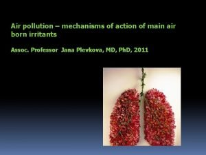 Air pollution mechanisms of action of main air