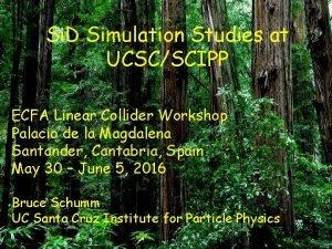 Si D Simulation Studies at UCSCSCIPP ECFA Linear