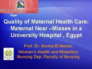 Egypt Quality of Maternal Health Care Maternal Near