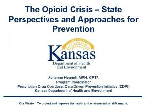 The Opioid Crisis State Perspectives and Approaches for