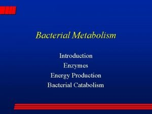 Bacterial Metabolism Introduction Enzymes Energy Production Bacterial Catabolism