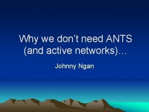 Why we dont need ANTS and active networks