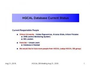 HGCAL Database Current Status Current Responsible People Vilnius