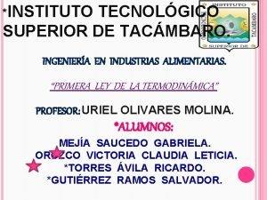 INSTITUTO TECNOLGICO SUPERIOR DE TACMBARO INGENIERA EN INDUSTRIAS