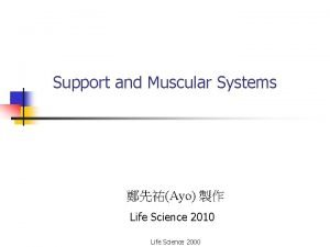 Support and Muscular Systems Ayo Life Science 2010