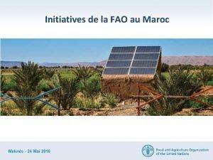 Initiatives de la FAO au Maroc Adoption des