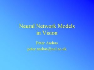 Neural Network Models in Vision Peter Andras peter