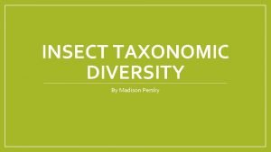 INSECT TAXONOMIC DIVERSITY By Madison Persky Insect Orders