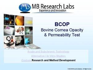 BCOP Bovine Cornea Opacity Permeability Test Acute and