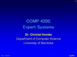 1 COMP 4200 Expert Systems Dr Christel Kemke