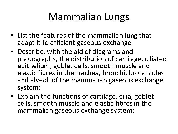 Mammalian Lungs List the features of the mammalian