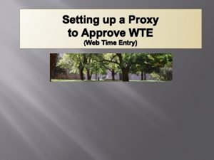 Setting up a Proxy to Approve WTE Web