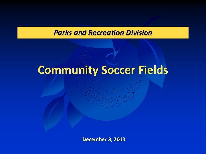 Parks and Recreation Division Community Soccer Fields December