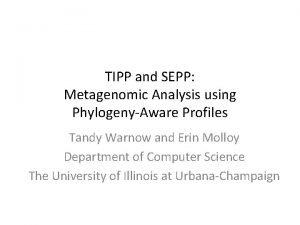 TIPP and SEPP Metagenomic Analysis using PhylogenyAware Profiles
