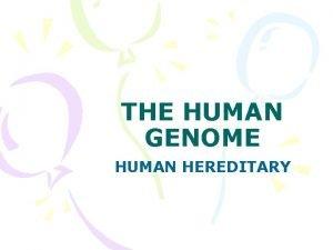 THE HUMAN GENOME HUMAN HEREDITARY HUMAN CHROMOSOMES KARYOTYPE