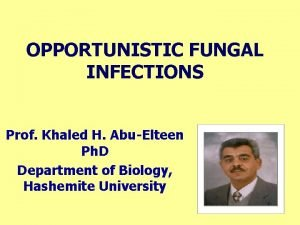 OPPORTUNISTIC FUNGAL INFECTIONS Prof Khaled H AbuElteen Ph