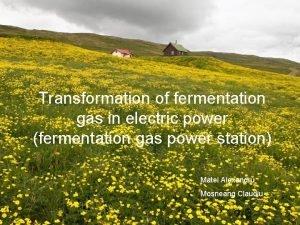Transformation of fermentation gas in electric power fermentation