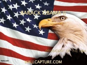 BARACK OBAMA II PRESIDENT OF THE USA WALLCAPTURE