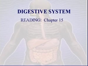 DIGESTIVE SYSTEM READING Chapter 15 1 A DIGESTIVE