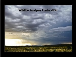 Wildlife Analyses Under 4 FRI Wildlife as defined