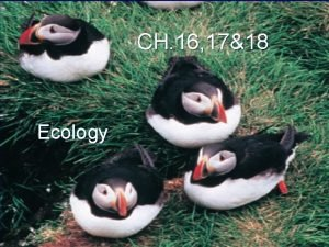 CH 16 1718 Ecology What is Ecology Ecology