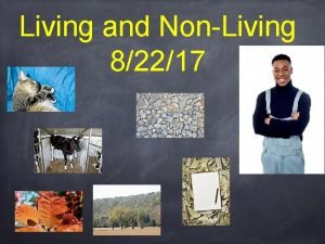 Living and NonLiving 82217 Characteristics of All Living