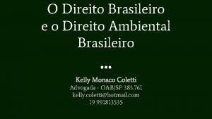 O Direito Brasileiro e o Direito Ambiental Brasileiro