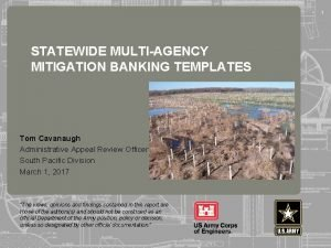 1 STATEWIDE MULTIAGENCY MITIGATION BANKING TEMPLATES 255 255