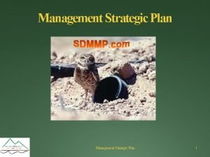 Management Strategic Plan 1 Strategic Plans Management Preserve
