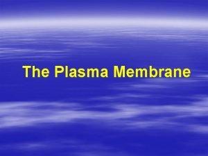 The Plasma Membrane History of the Plasma Membrane