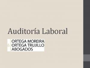 Auditora Laboral Auditora Laboral Consiste en una revisin