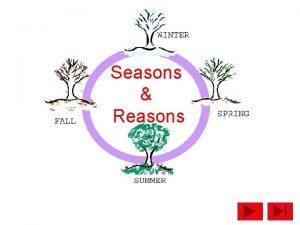 Seasons Reasons SEASONS The Seasons are divisions of