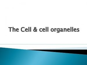 The Cell cell organelles Cell as an Efficient