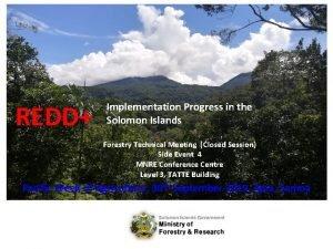 REDD Implementation Progress in the Solomon Islands Forestry