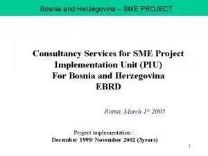 Bosnia and Herzegovina SME PROJECT Consultancy Services for