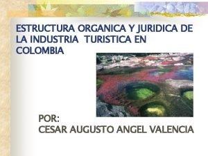 ESTRUCTURA ORGANICA Y JURIDICA DE LA INDUSTRIA TURISTICA