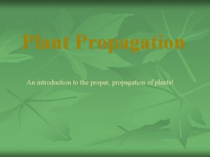 Plant Propagation An introduction to the proper propagation