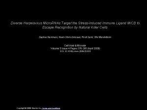 Diverse Herpesvirus Micro RNAs Target the StressInduced Immune