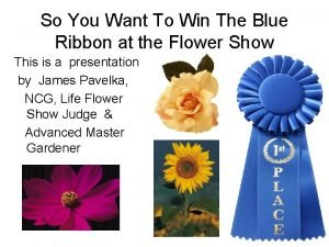 So You Want To Win The Blue Ribbon