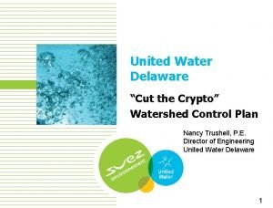 United Water Delaware Cut the Crypto Watershed Control