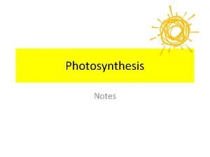 Photosynthesis Notes Breakdown the word Photosynthesis A Photosynthesis