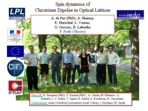 Spin dynamics of Chromium Dipoles in Optical Lattices