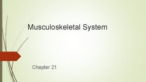 Musculoskeletal System Chapter 21 Structure and Function Components
