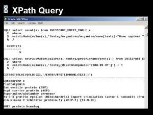 XPath Query View XML Data as Tables View
