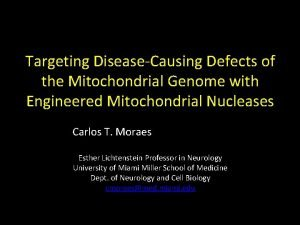 Targeting DiseaseCausing Defects of the Mitochondrial Genome with