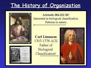The History of Organization Aristotle 384 322 BC